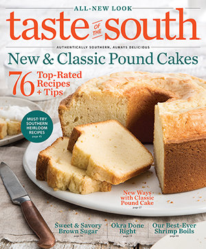Taste of the South Magazine